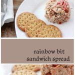 Delicious and healthy veggie filled sandwich spread. Can use either tuna or chicken breast, and whatever veggies you have handy! Yum. Healthy kids lunch (quick and easy)
